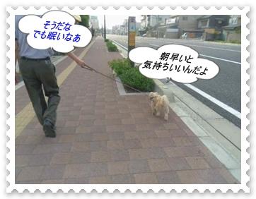 IMGP0753_20130712234346.jpg