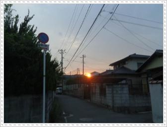 IMGP1490_20130730003246.jpg
