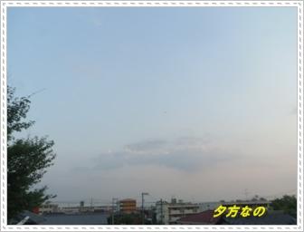 IMGP1839_20130807005849997.jpg
