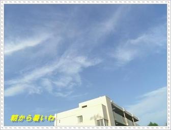 IMGP2307_201308210045571d2.jpg