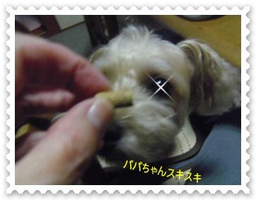 IMGP3029_2013091000231926d.jpg