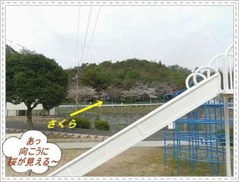 IMGP6131.jpg
