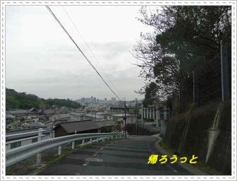IMGP6137.jpg