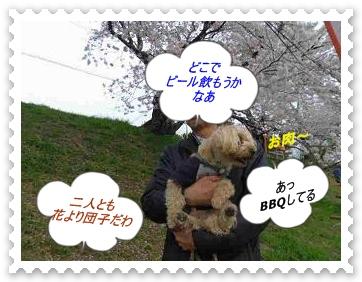 IMGP6412_20130406002317.jpg