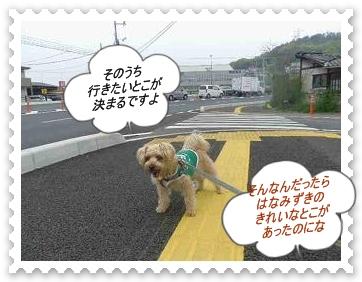 IMGP6868_20130418001055.jpg