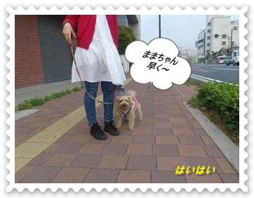 IMGP6966.jpg