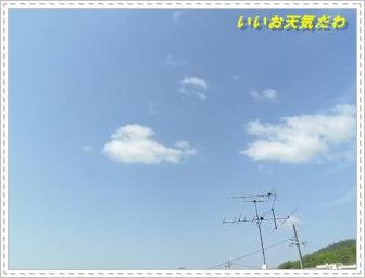 IMGP7134.jpg