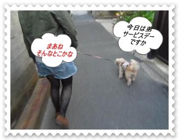 IMGP7461.jpg