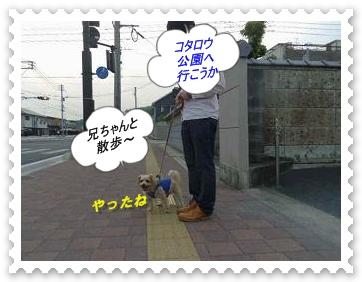 IMGP7519_20130430013454.jpg