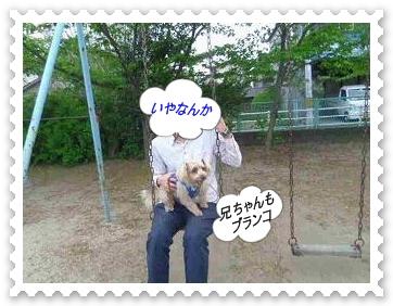 IMGP7524_20130430013541.jpg