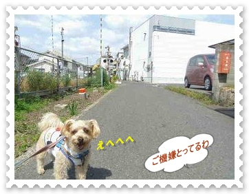IMGP7598.jpg