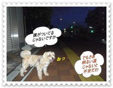 IMGP9577.jpg