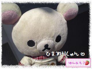 プランターガーデニング日記★3★-1
