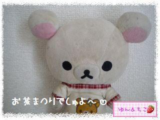 伊藤園お茶まつり♪キッチングッズ-1