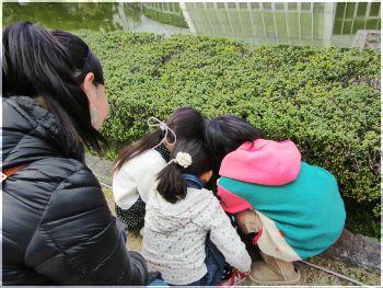 2013.4京都植物園