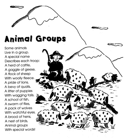 2013.4ワーク240animal groups