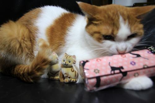 ブログNo.38(お出迎え猫)7