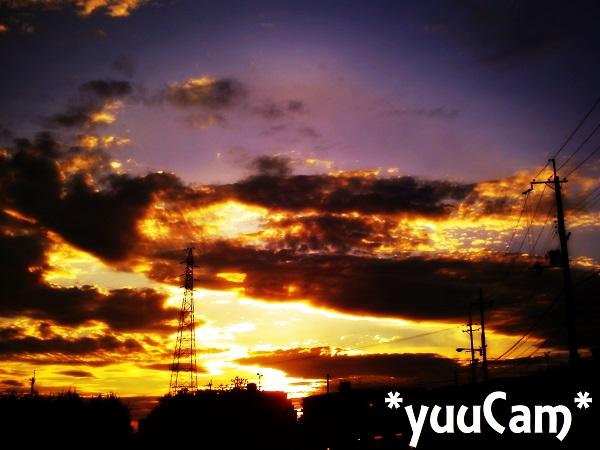 20120815901.jpg