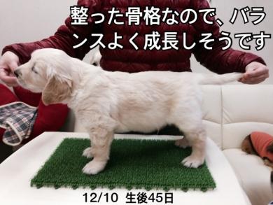 20131210mizuiro1.jpg