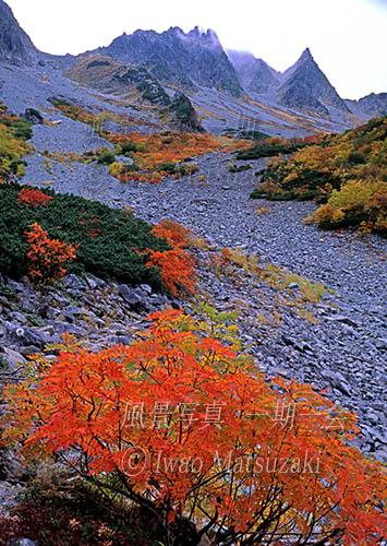 blg1_紅葉と涸沢岳-0b