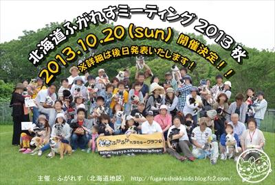 ミーティング2013秋フライヤー