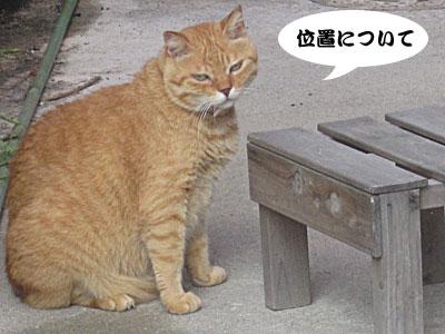 13_08_05_1.jpg