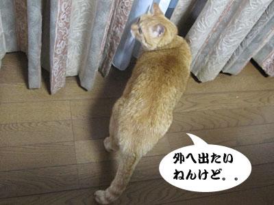 13_08_08_2.jpg