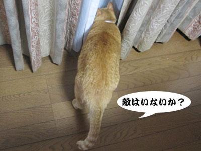 13_08_08_3.jpg