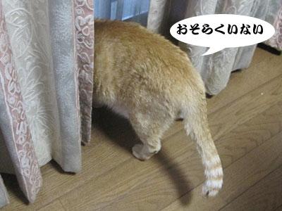 13_08_08_4.jpg