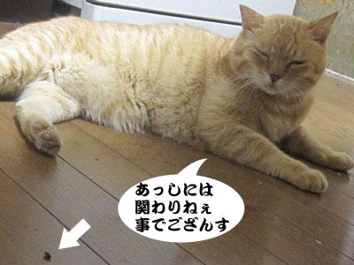 13_08_21_2.jpg