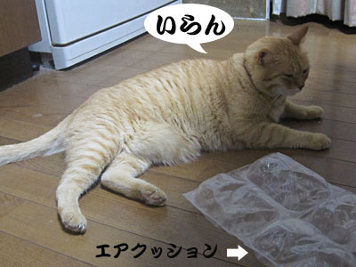 13_08_21_3.jpg