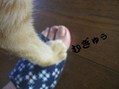 13_09_03_4.jpg
