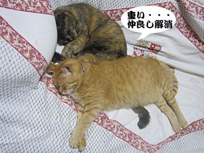 13_09_08_3.jpg