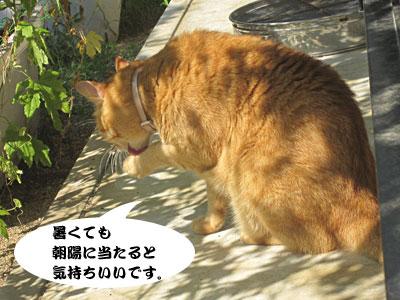 13_09_11_3.jpg