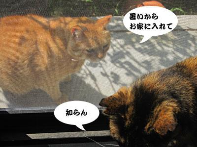 13_09_11_4.jpg