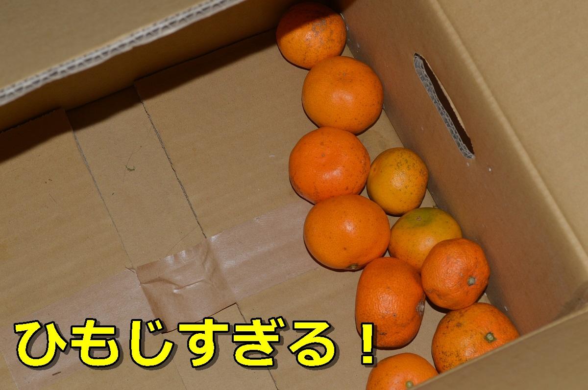 DSC_0543_20131207231125e37.jpg