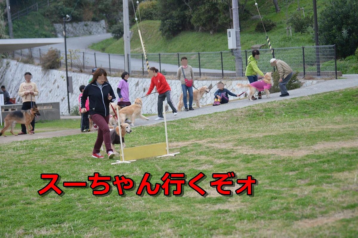DSC_1548-038.jpg