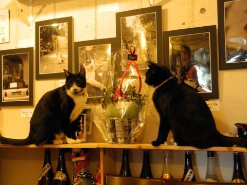 猫町カフェ29さん、ありがとう。