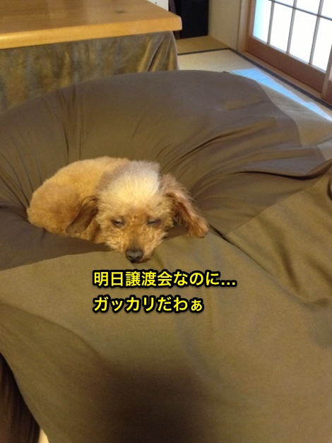 image98.jpg