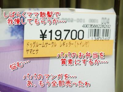 20140214_5.jpg