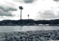 aichi240331-2.jpg
