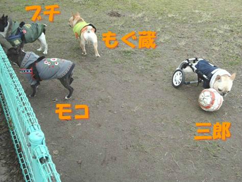 20131230210143d9f.jpg