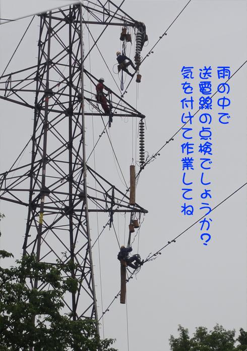 201306162.jpg