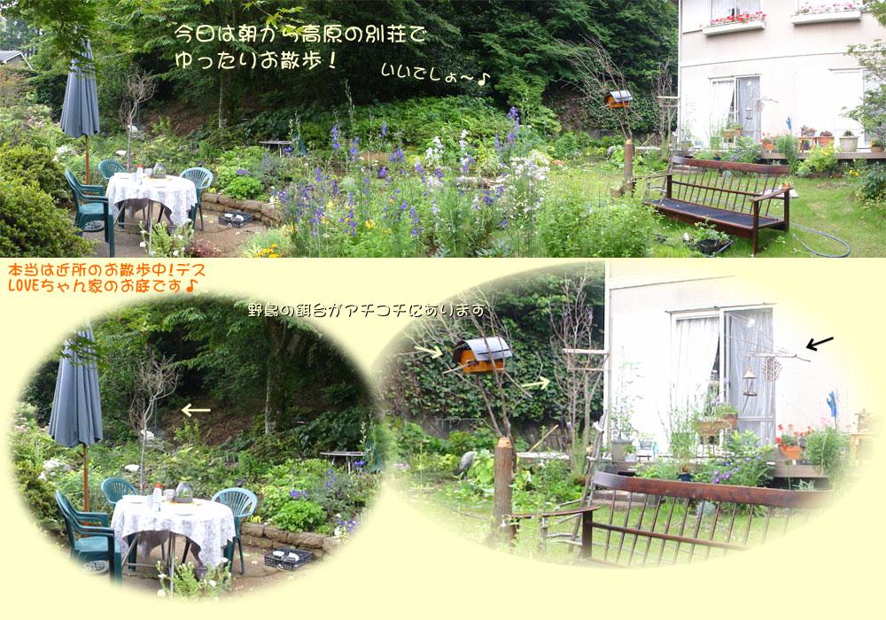2013061810b.jpg