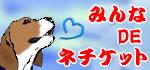 20130609234257e96.jpg