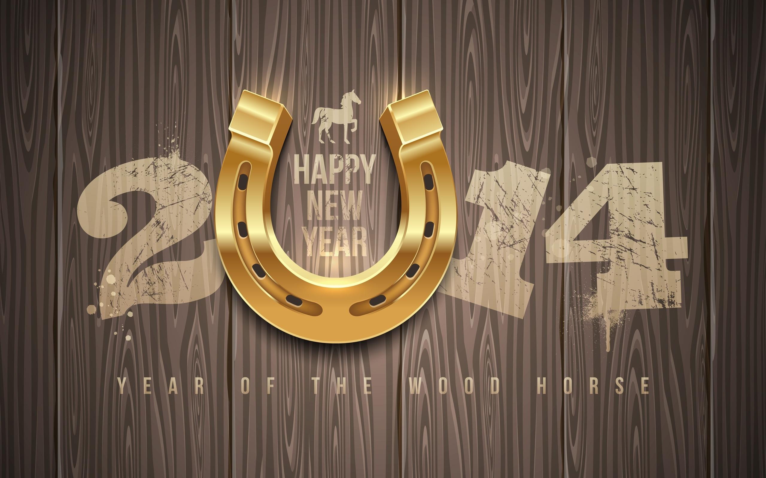 554102_god_loshadi_happy_new_year_novyiy_god_2014_2560x1600_(www_GdeFon_ru).jpg