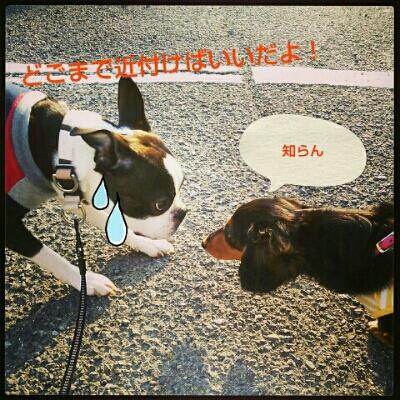 fc2_2013-05-10_12-00-44-713.jpg