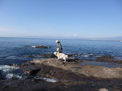2013_1124江ノ島0013