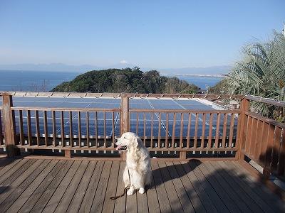 2013_1124江ノ島0006