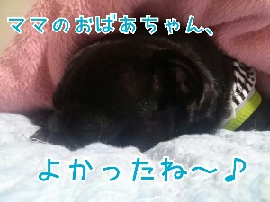 fc2_2013-10-24_17-58-58-054.jpg